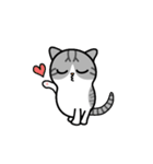 Little cotton candy cat(個別スタンプ:06)