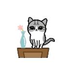 Little cotton candy cat(個別スタンプ:13)