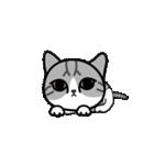 Little cotton candy cat(個別スタンプ:16)