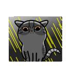 Little cotton candy cat(個別スタンプ:17)