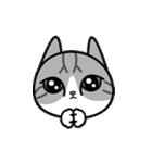 Little cotton candy cat(個別スタンプ:20)