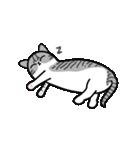 Little cotton candy cat(個別スタンプ:21)