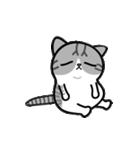 Little cotton candy cat(個別スタンプ:22)