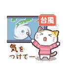 秋猫・詰め合わせ(個別スタンプ:10)