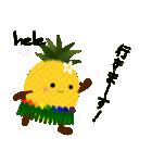 パインちゃん ハワイへ行く!(個別スタンプ:17)
