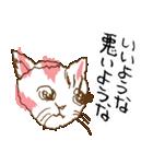 あやふやすぎるネコ(個別スタンプ:02)