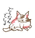 あやふやすぎるネコ(個別スタンプ:16)