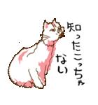 あやふやすぎるネコ(個別スタンプ:18)