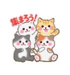 一年中おめでとう!by MGファミリー 2(個別スタンプ:31)