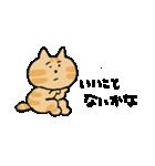 いじらしい猫ちゃん2(個別スタンプ:1)