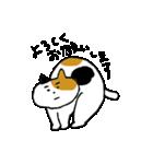 いじらしい猫ちゃん2(個別スタンプ:39)