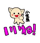 小笠原さんとみんなのスタンプ(個別スタンプ:22)