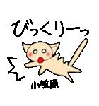小笠原さんとみんなのスタンプ(個別スタンプ:31)