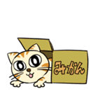 家族に優しいゆかいな猫メイちゃん2(個別スタンプ:4)
