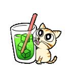 家族に優しいゆかいな猫メイちゃん2(個別スタンプ:6)