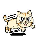家族に優しいゆかいな猫メイちゃん2(個別スタンプ:31)