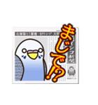 せきせいいんこ! [Ver6](動く・あいづちNo2(個別スタンプ:19)