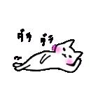 白ねこスタンプズ(個別スタンプ:25)