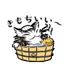 猫のダヤン メッセージスタンプ(個別スタンプ:29)