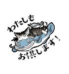 猫のダヤン メッセージスタンプ(個別スタンプ:37)