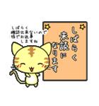 可愛い にゃんこ スタンプ(個別スタンプ:25)