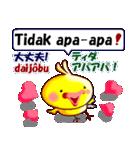 インドネシア語と日本語のひよこです(個別スタンプ:16)