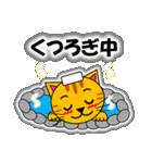 あいづち上手なトラ「3匹のこねこ 4」猫(個別スタンプ:19)