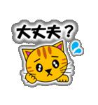 あいづち上手なトラ「3匹のこねこ 4」猫(個別スタンプ:33)