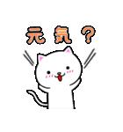 シロ&クロ 日常会話編 パート2 シロver(個別スタンプ:03)