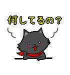 シロ&クロ 日常会話編 パート2 クロver(個別スタンプ:05)