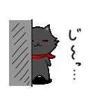 シロ&クロ 日常会話編 パート2 クロver(個別スタンプ:30)