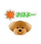 かわいい♪トイプードル(個別スタンプ:01)