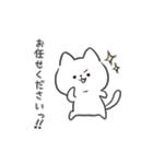 白ねこマルちゃん3(個別スタンプ:13)