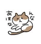 ゆるかわたのC!にゃんこ先輩スタンプ(個別スタンプ:08)