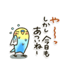 インコちゃんの夏(個別スタンプ:2)