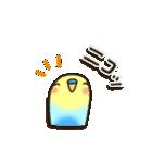 インコちゃんの夏(個別スタンプ:27)