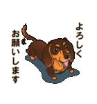 気軽にスタンプ ダックス(チョコタン)(個別スタンプ:10)