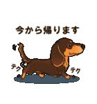 気軽にスタンプ ダックス(チョコタン)(個別スタンプ:18)
