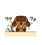 気軽にスタンプ ダックス(チョコタン)(個別スタンプ:30)