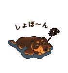 気軽にスタンプ ダックス(チョコタン)(個別スタンプ:35)