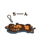 気軽にスタンプ ダックス(チョコタン)(個別スタンプ:38)