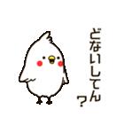 白いトリ。関西風味(個別スタンプ:1)