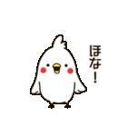白いトリ。関西風味(個別スタンプ:13)