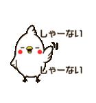白いトリ。関西風味(個別スタンプ:37)
