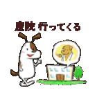プレママわんこ(個別スタンプ:02)