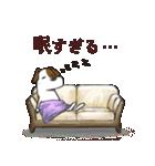 プレママわんこ(個別スタンプ:15)
