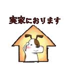プレママわんこ(個別スタンプ:16)