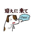 プレママわんこ(個別スタンプ:25)