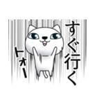 あおめにゃんこ2(個別スタンプ:25)