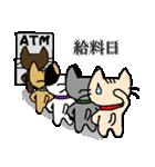 がんばれ営業ニャン小太郎くん(個別スタンプ:12)